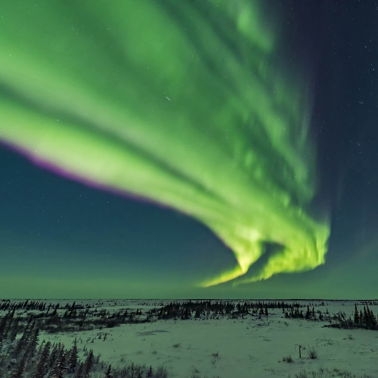 Canada's Northern Lights