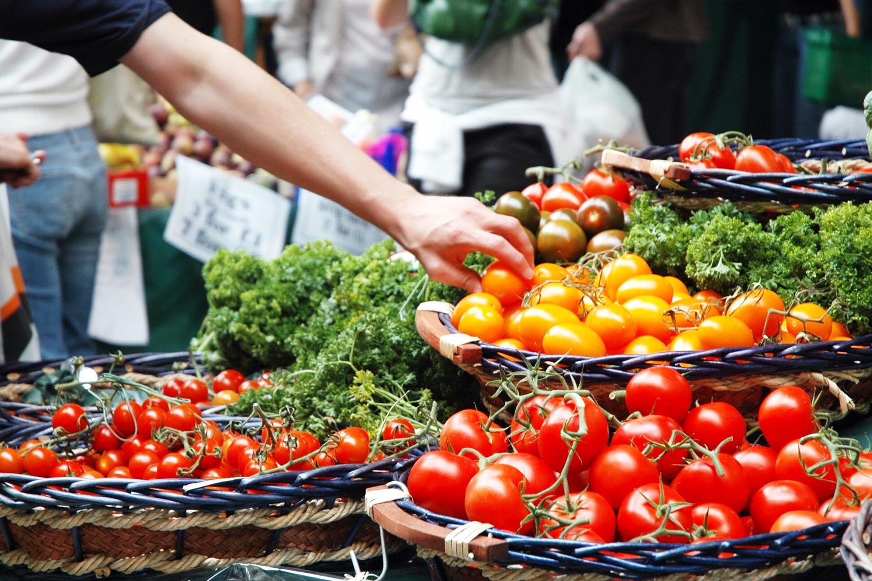 Delhi Farmers Go Organic
