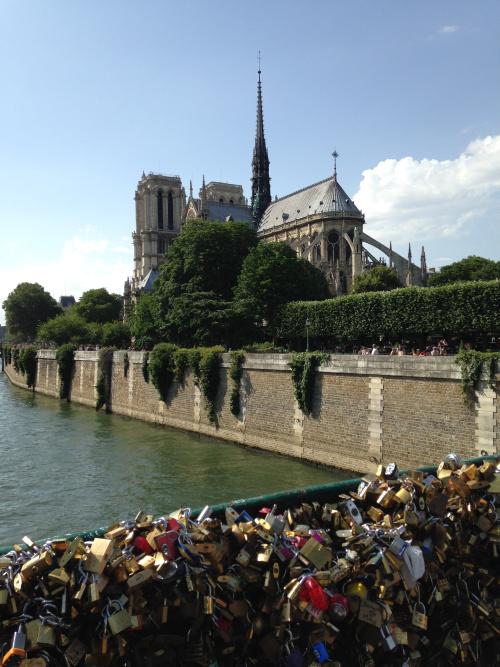 Notre Dame and love locks bridge, Paris