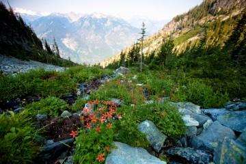 U.S. National Parks Service