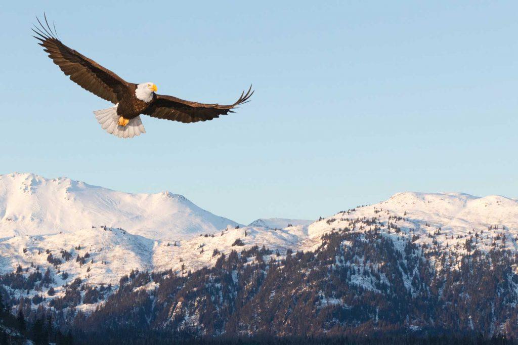 Photos of Alaska
