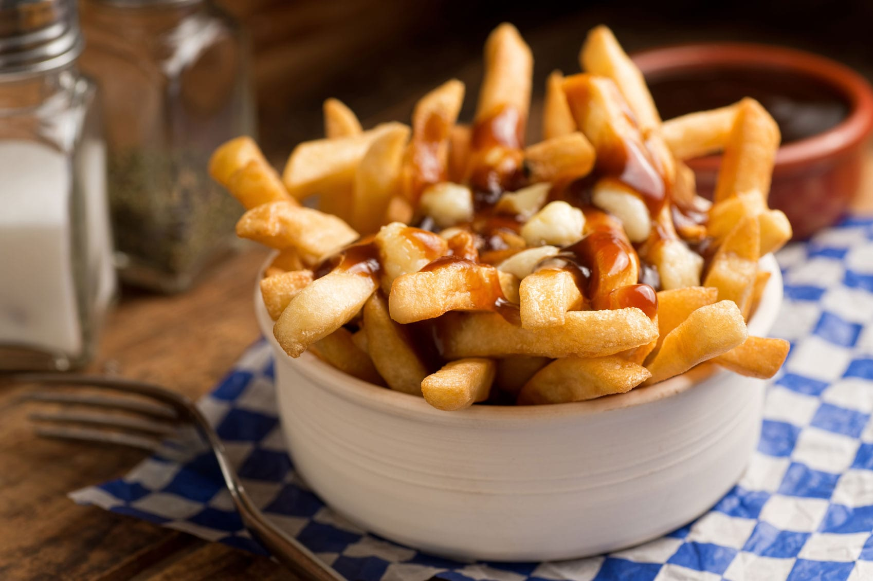 Dishes from around the world Poutine-White-Bowl-www.istockphoto.comgbphotoclose-up-photo-of-poutine-in-a-white-bowl-with-fork-gm452682759-30008216-Fudio