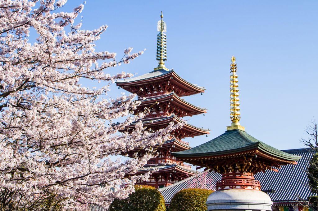 Black Friday Travel Offers Japanese-Pagoda-www.istockphoto.com_gb_photo_japanese-pagoda-gm483098628-70423863-idmanjoe