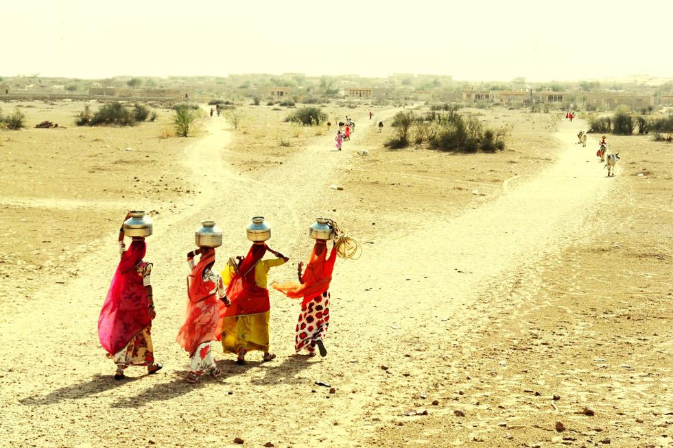 Rajasthan - MetoWe