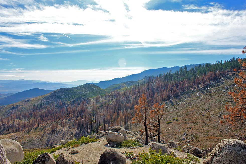northern california forest fires