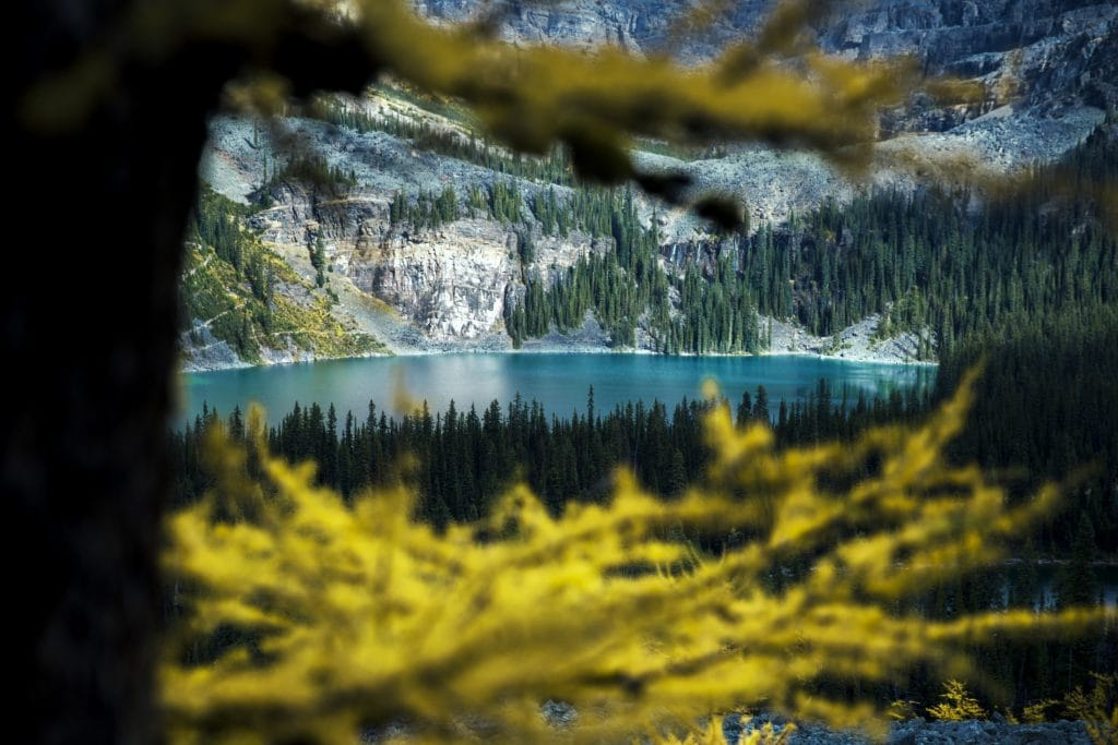 glacier lake in British Colombia. Canada is one of the top 2020 travel destinations