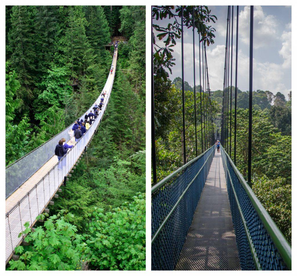 Capilano Bridge & Cloud Forest Bridge in Costa Rica