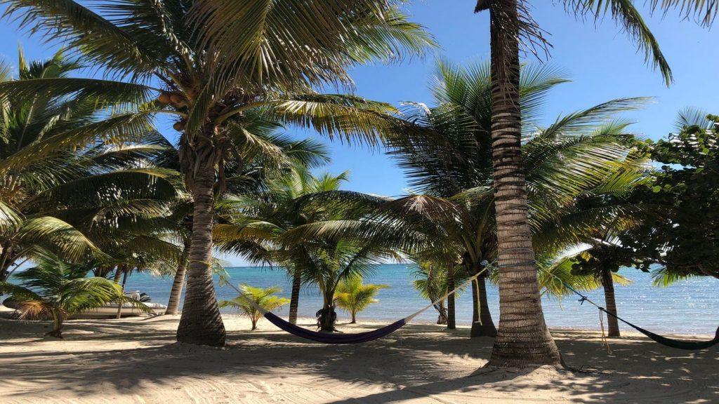hammock palm tree beach Akumal Mexico