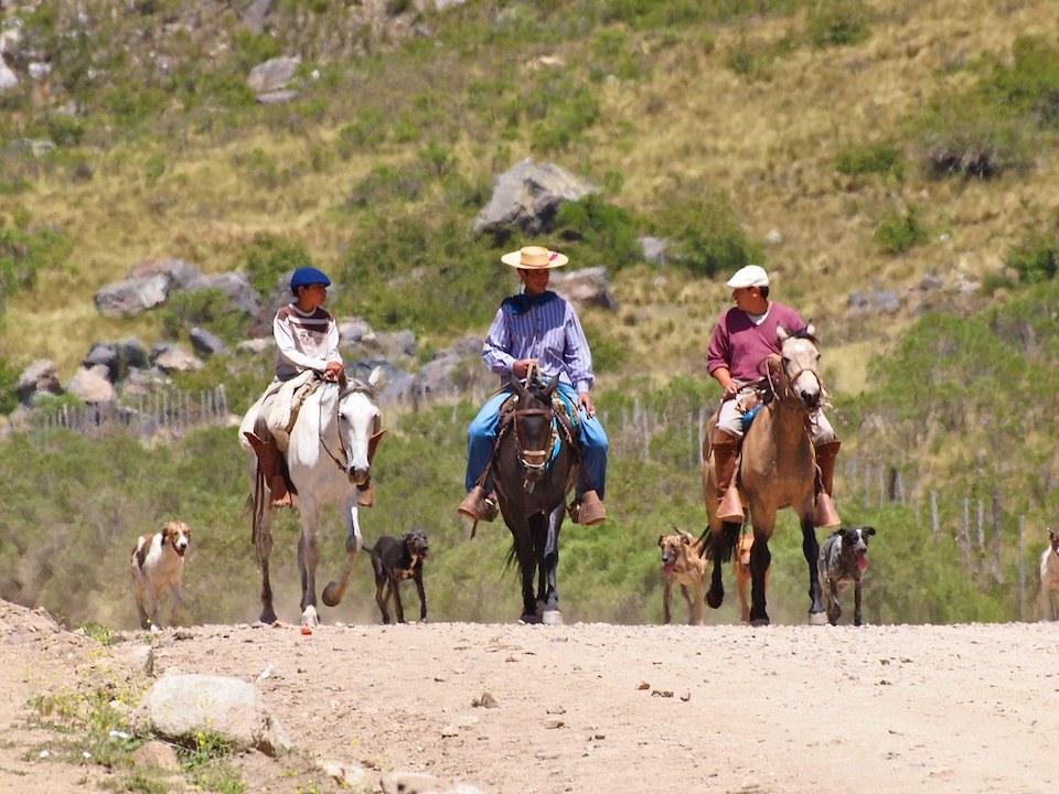 gauchos riding horses in argentina