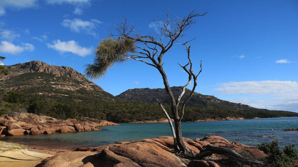 nature Freycinet National Park Tasmania