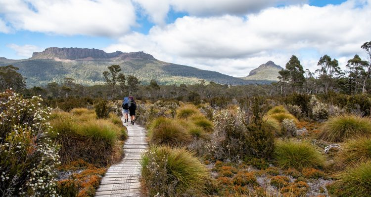 nature hiking trail Tasmania