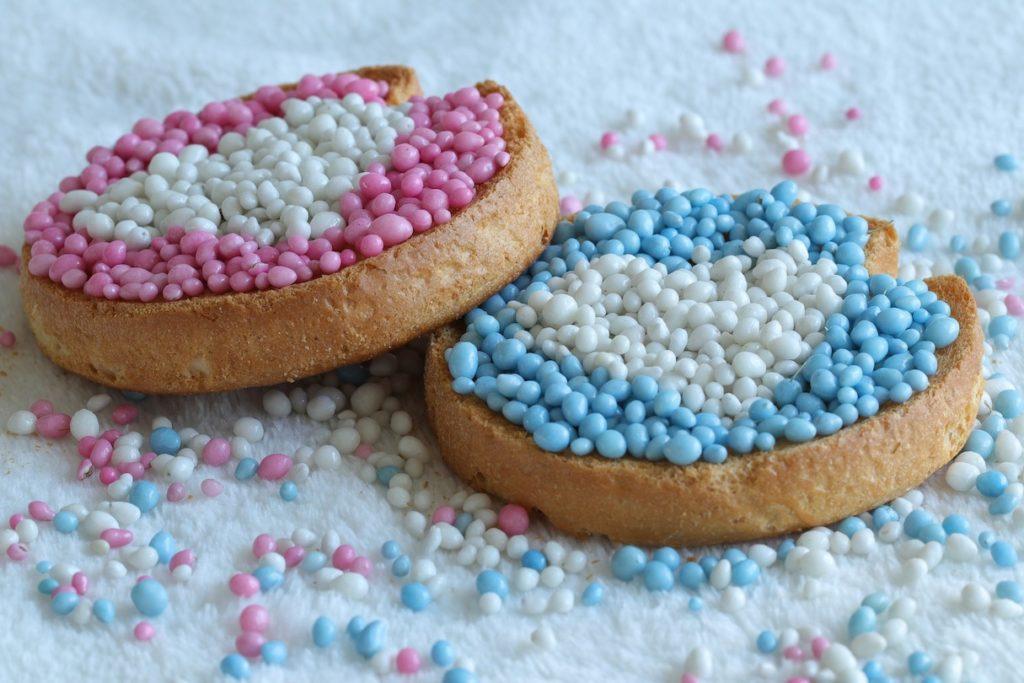 Dutch snacks muisjes