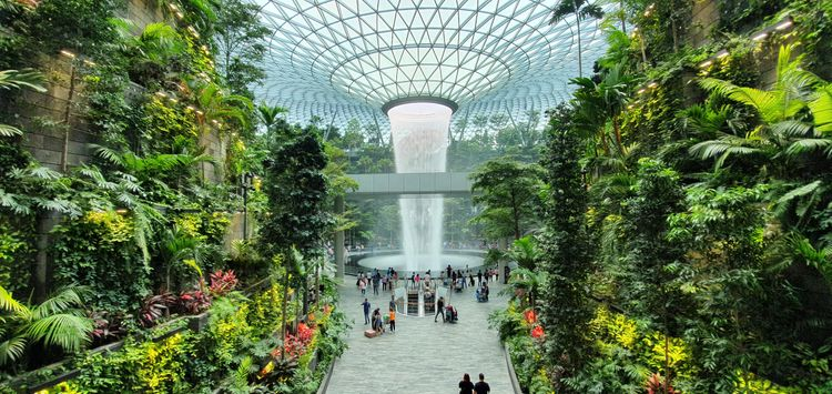 rain vortex singapore changi airport