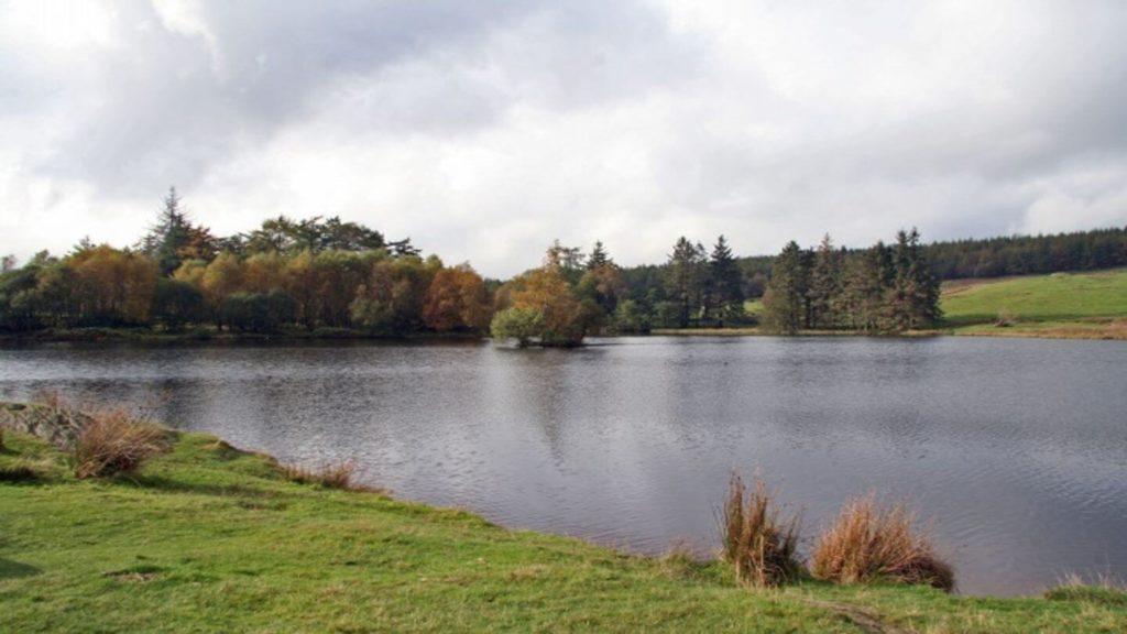 lake Moss Eccles Tarn Lake District