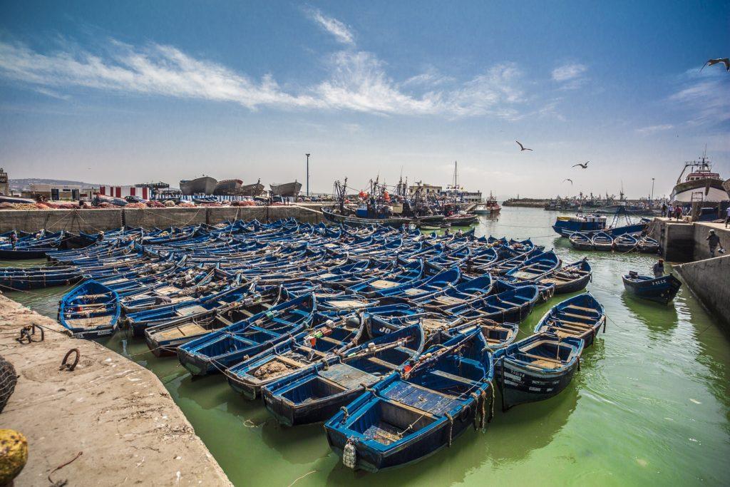 blue fishing boats Essaouira Morocco