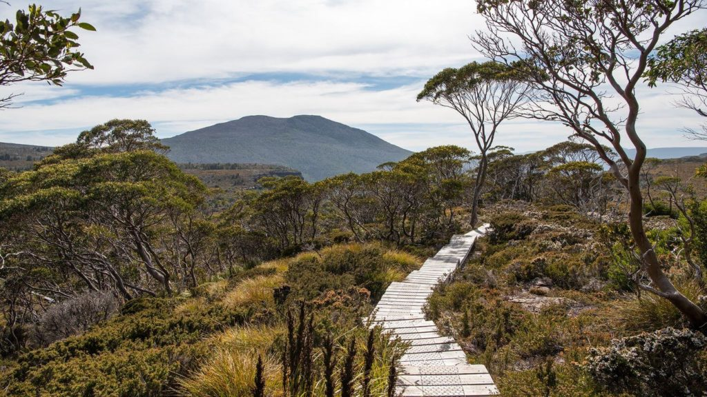 walking trail tasmania australia