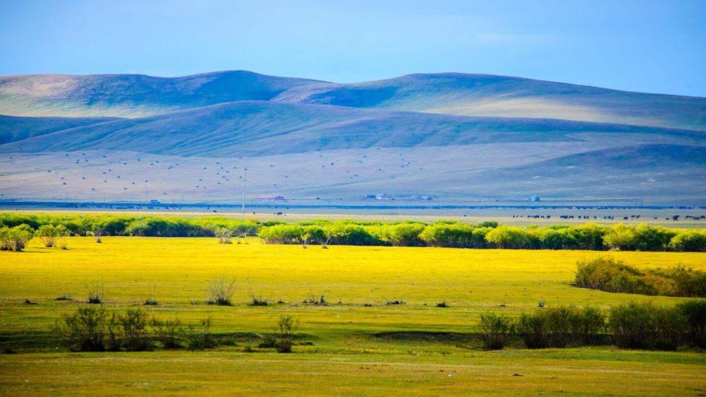 Hulunbuir grasslands Mongolia zoom quizzes