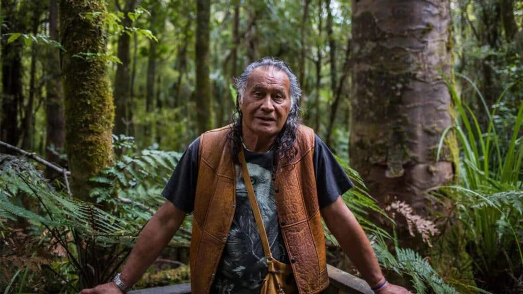 Bill Waipoua in a forest New Zealand