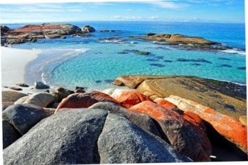 red rocks blue water Bay of Fires Tasmania Australian experiences