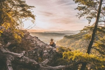 woman sitting among trees on mountain viewpoint