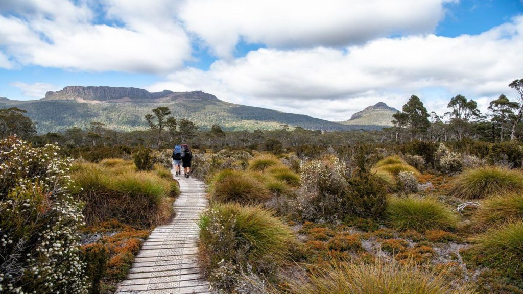 two people hiking the Overland Track through bushland in Tasmania