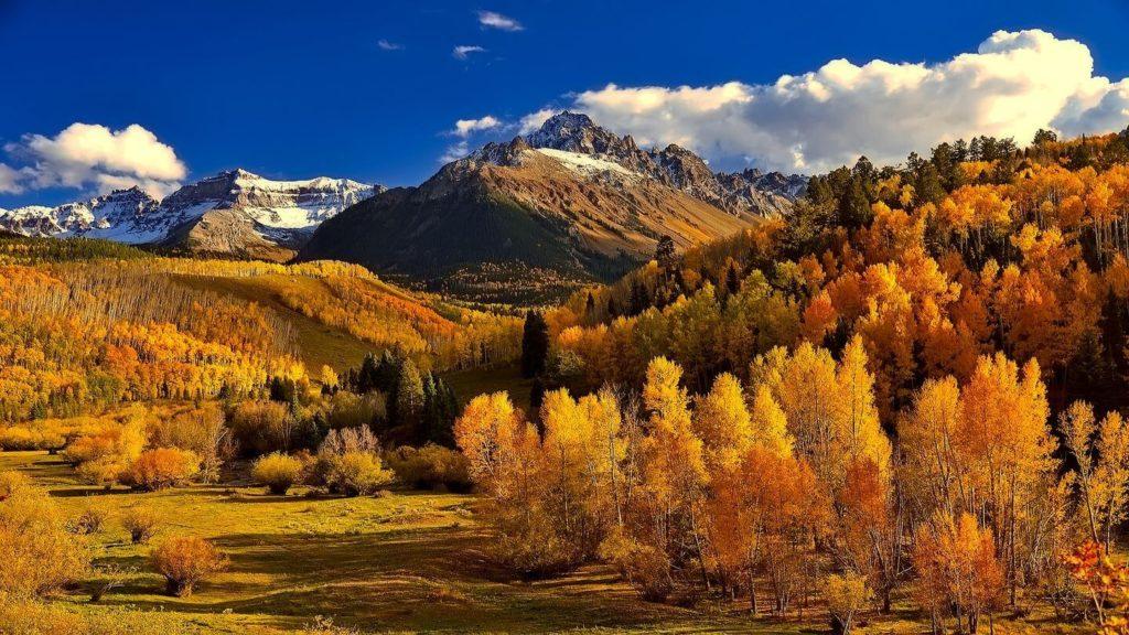 autumn foliage mountains colorado USA