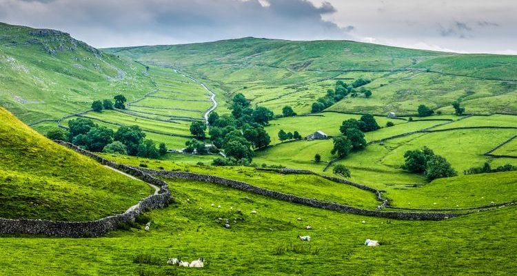green fields Cry Stone Walls Yorkshire England