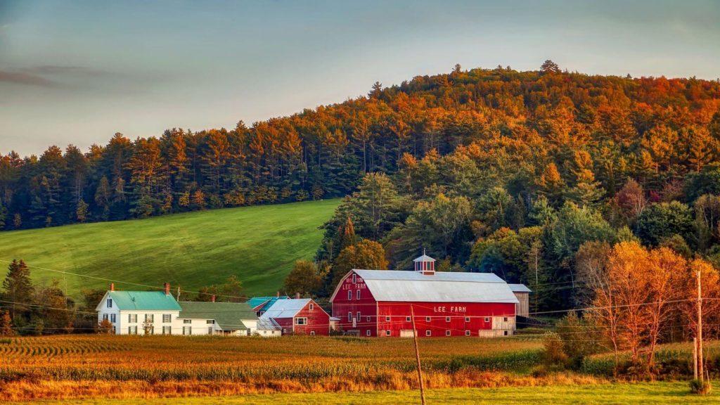 red fall foliage New Hampshire USA
