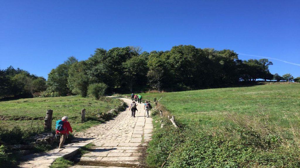 pilgrims walking the Camino de Santiago through the countryside