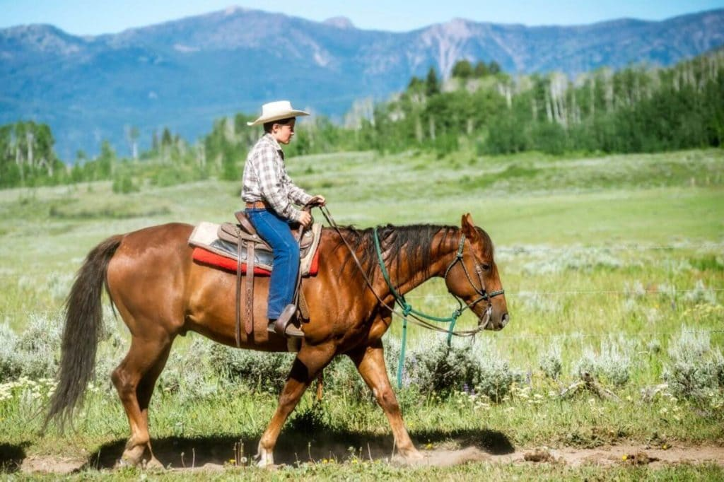 child riding a horse in Montana large family holidays