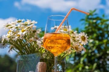 orange wine glass held in front of flowers and blue sky