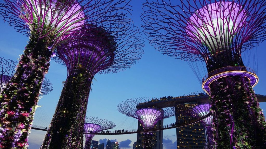 Gardens by the Bay illuminated at night Singapore Asia bucket list
