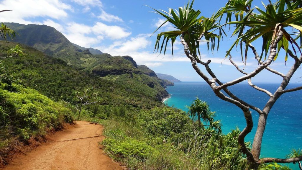 If seniors have the vaccine they will travel to Hawaii