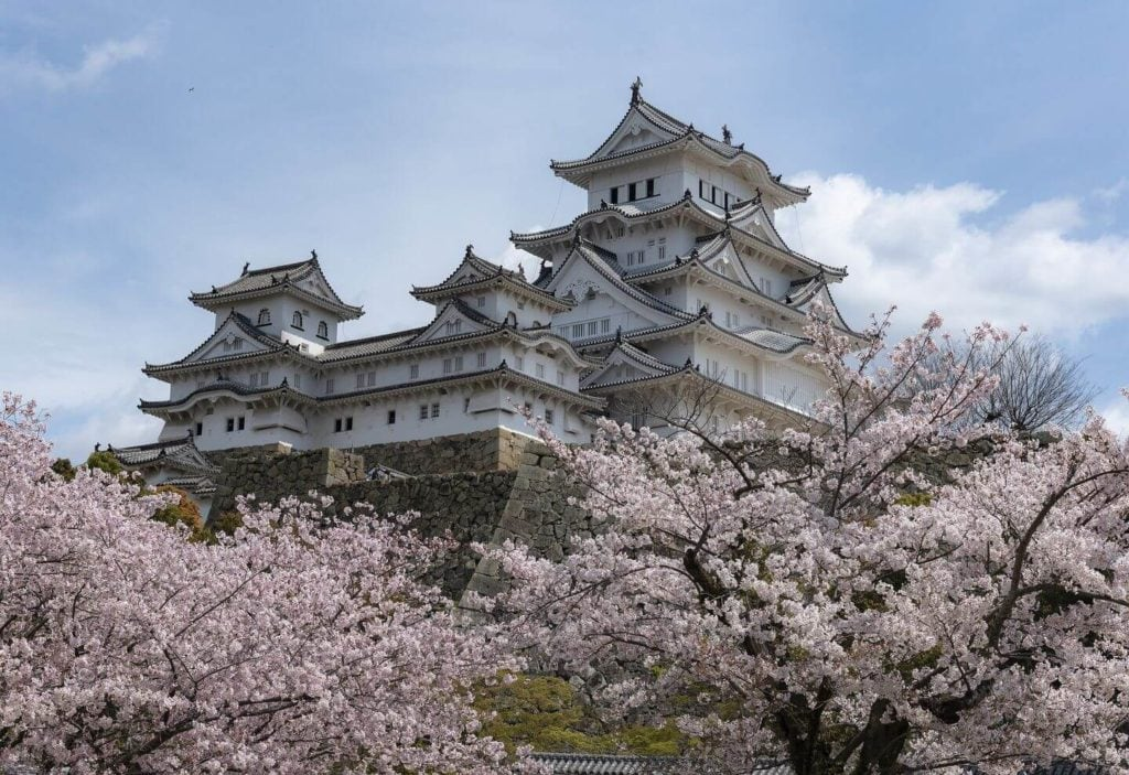 Himeji Castle surrounded by cherry blossoms Japan