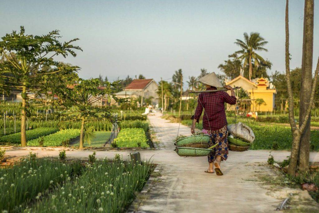 organic farming village Hoi An