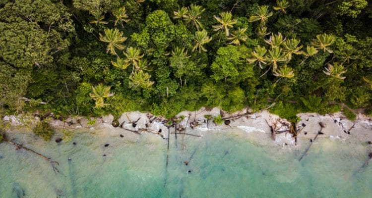 An overhead image of a beach in Costa Rica.