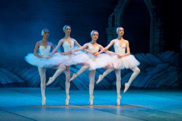 swan lake ballerinas Russian ballet