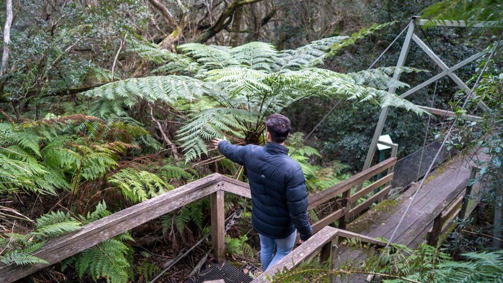 Exploring nature in Victoria, Australia
