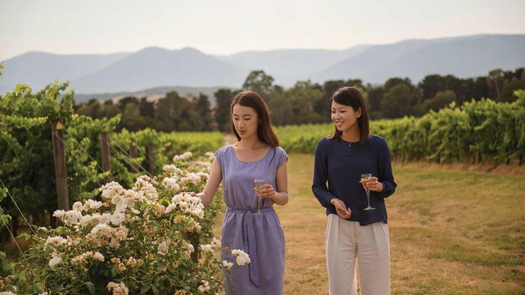 Winery in Victoria, Australia
