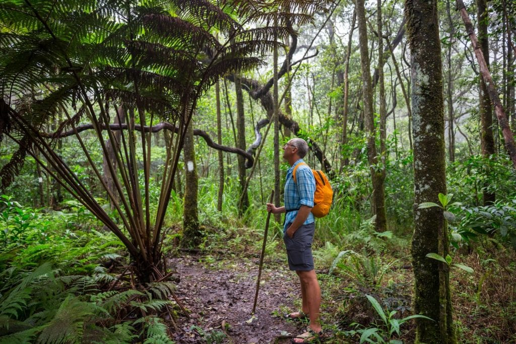 Well-fitted footwear is a non-negotiable when hiking through Asia's rainforests