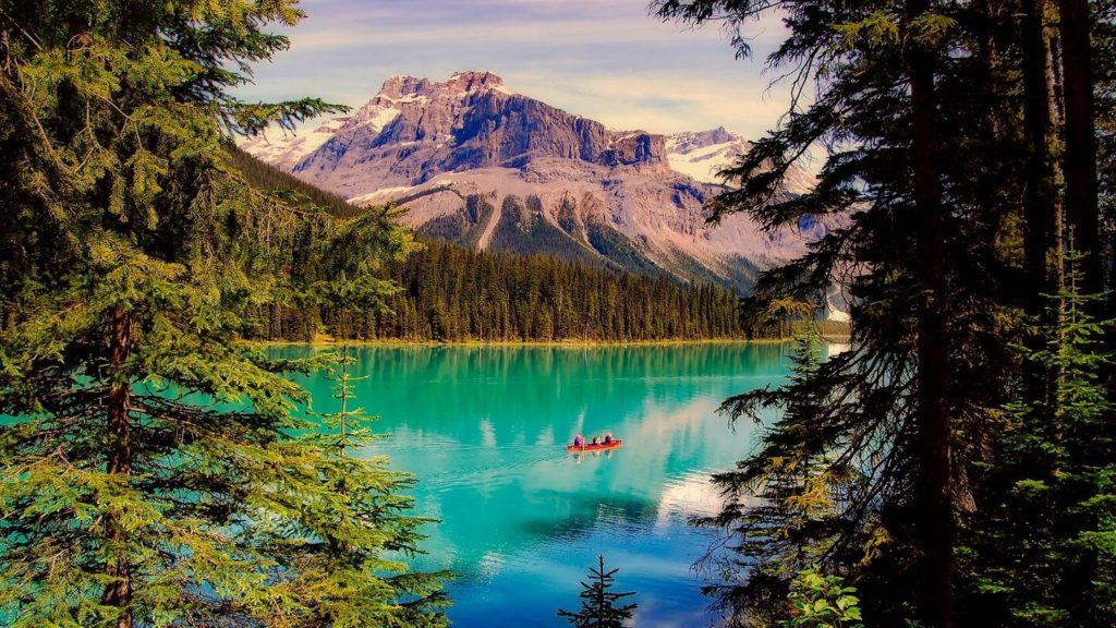 emerald lake forest mountains Canadian Rockies
