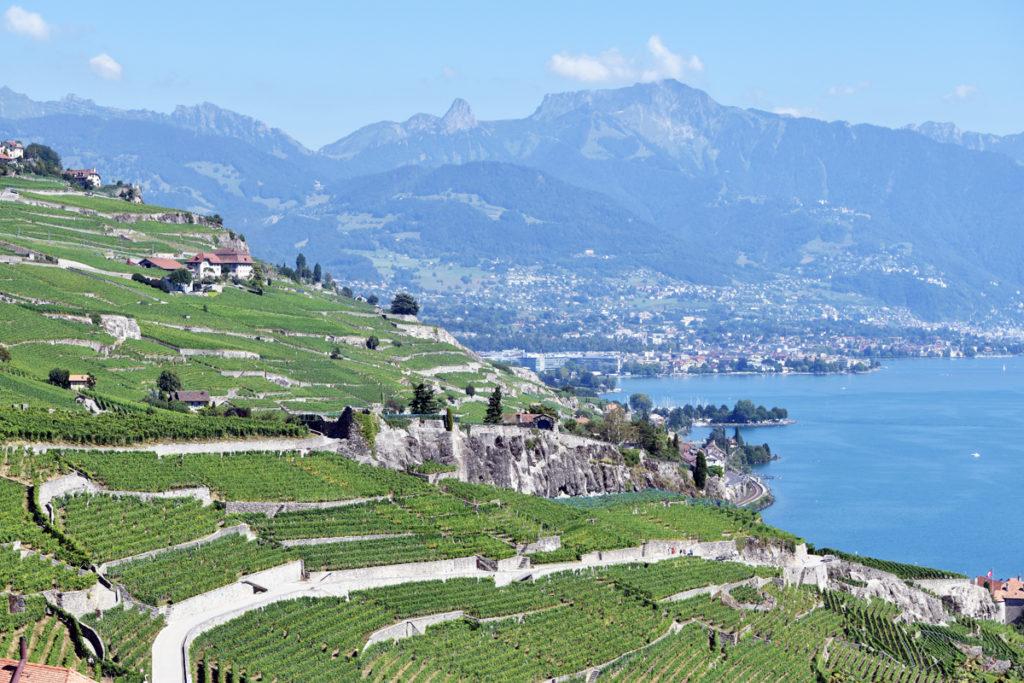 Lavaux Vinorama in canton Vaud, Switzerland. photo: @alltheswissthings
