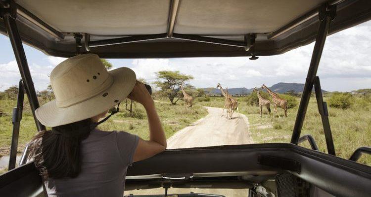 woman holding binoculars in a jeep on a safari game drive best safaris