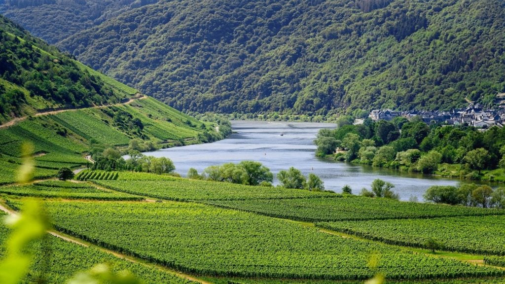 quarantine-free Moselle river