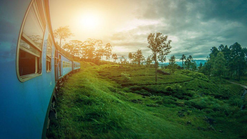 train through green tea plantations Ella Sri Lanka