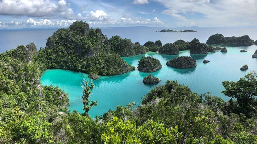 emerald water forest islands Raja Ampat Islands Indonesia