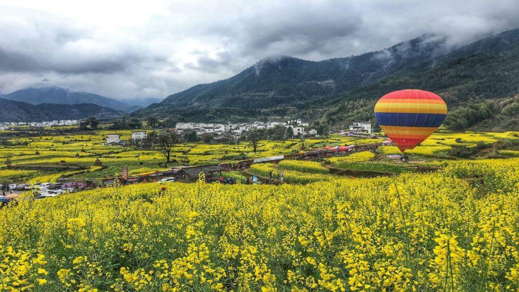 yellow flower fields mountains hot air balloon Wuyuan China