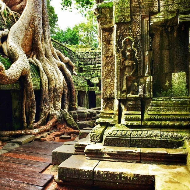 Cambodia AngkorWat TaProhm 2016 R 477392859_high