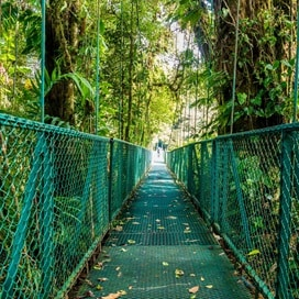 CostaRica Arenal HangingBridge 511784944 GE Sept19 1300x1300