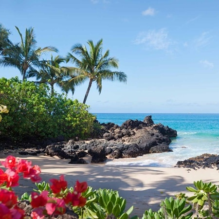 Hawaii MauiBeach 2016 R 173414206